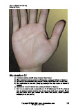 Learn Palm reading illustration 2