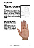 Learn Mixed type of hands in palm reading